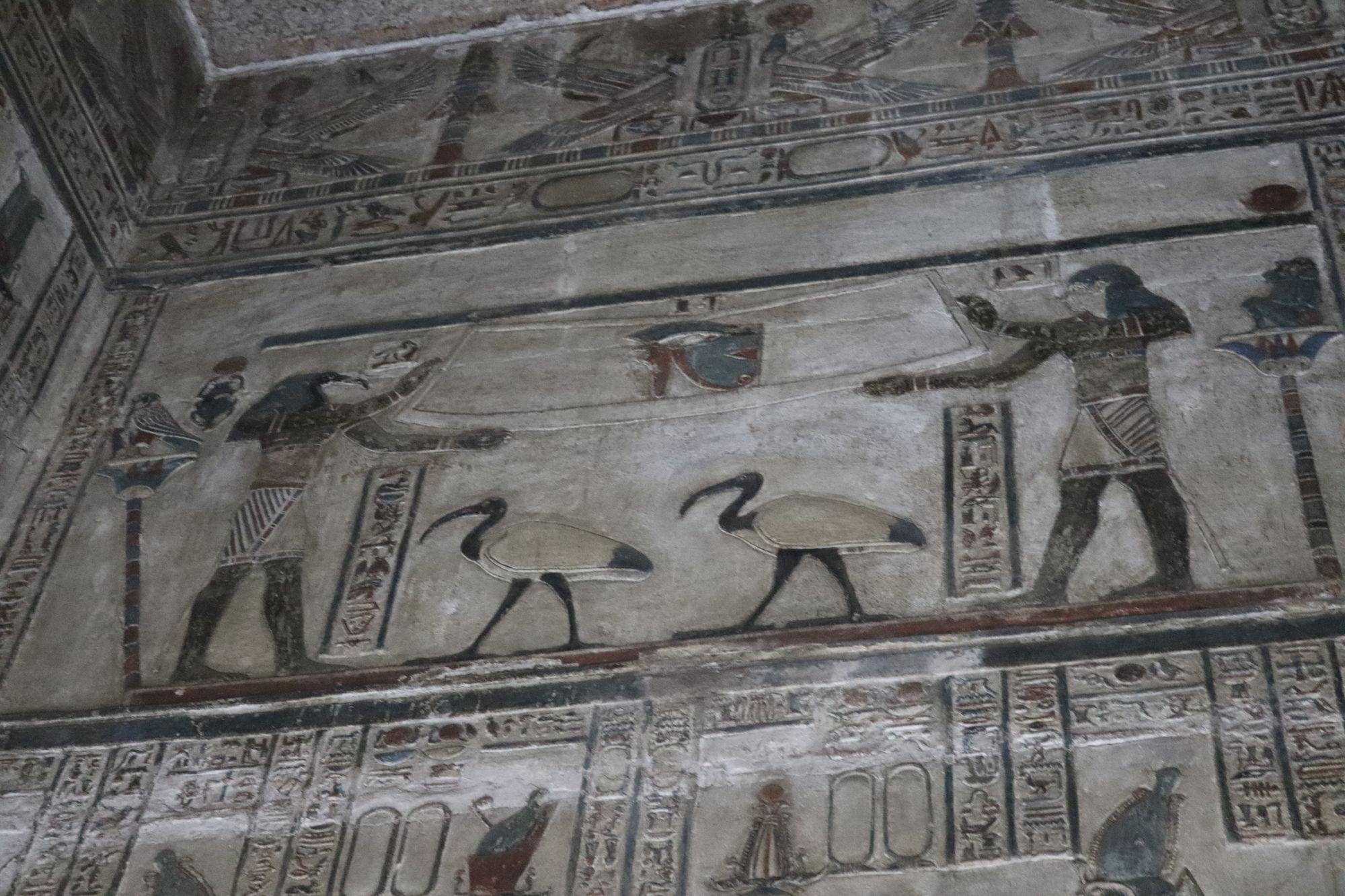 Antiguo Egipto - Templo de Hathor en Dendera - Egiptología
